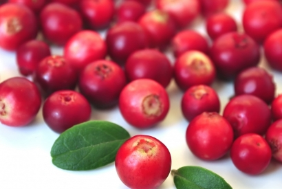 Chilean Guava : the Benefits